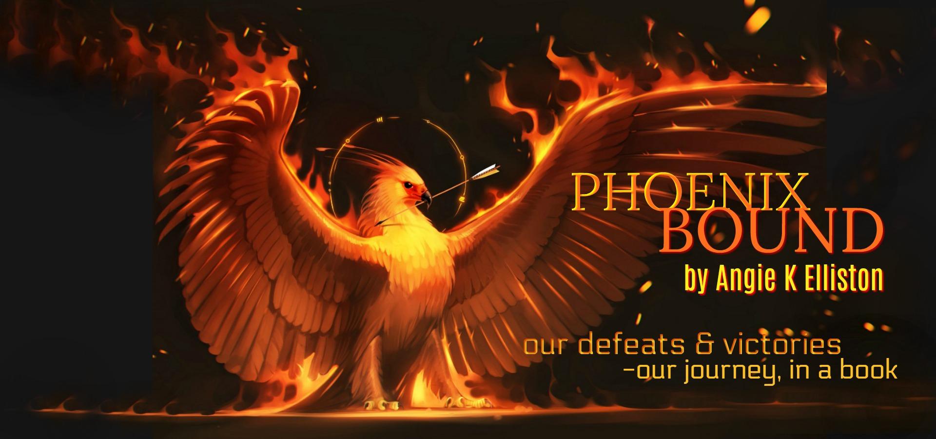 slider phoenix bound
